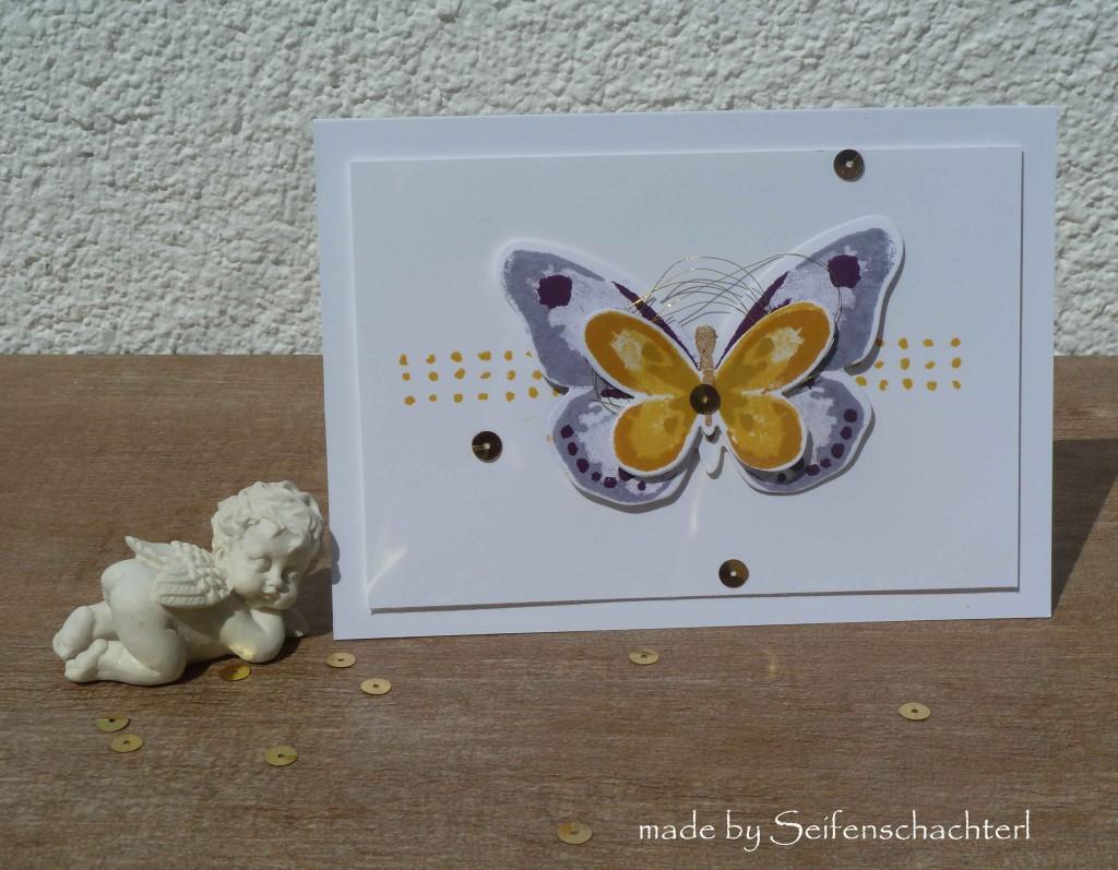 Schmetterlingskarte-lila